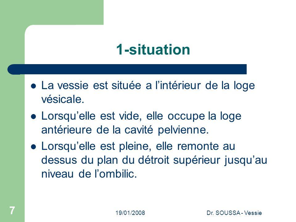 1-situation La vessie est située a l'intérieur de la loge vésicale.