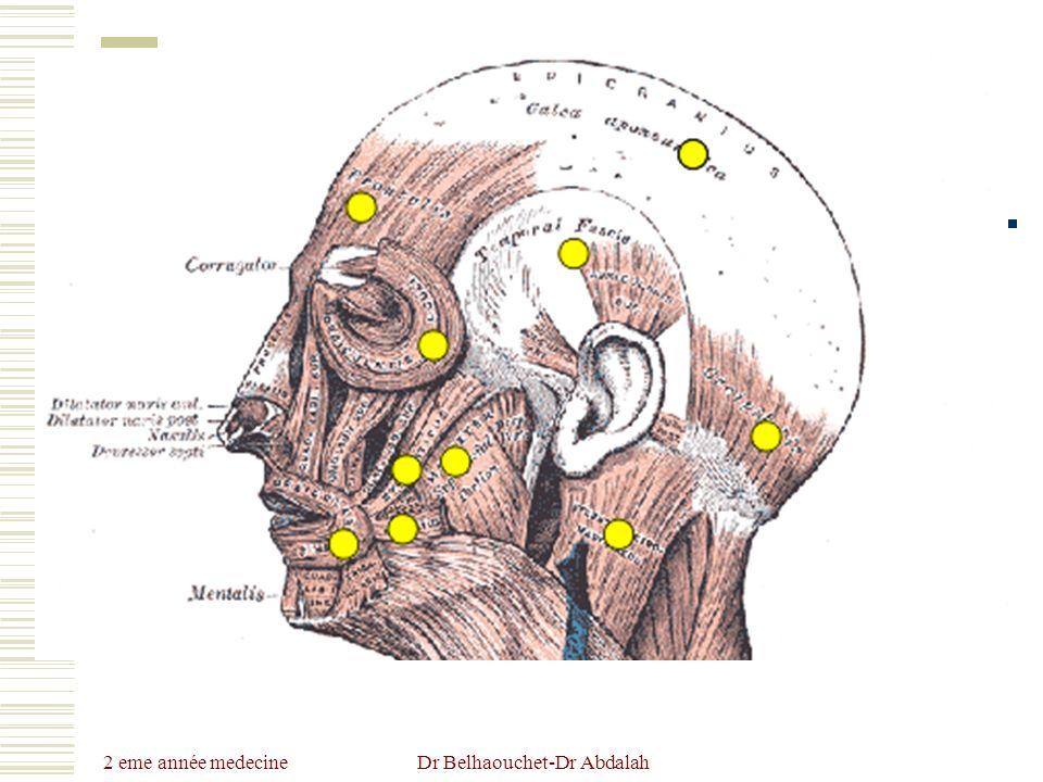 Dr Belhaouchet-Dr Abdalah