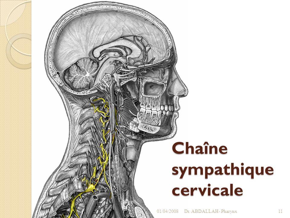Chaîne sympathique cervicale