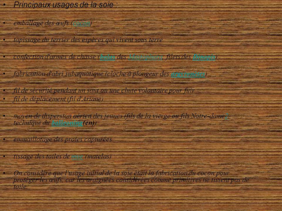 Principaux usages de la soie :