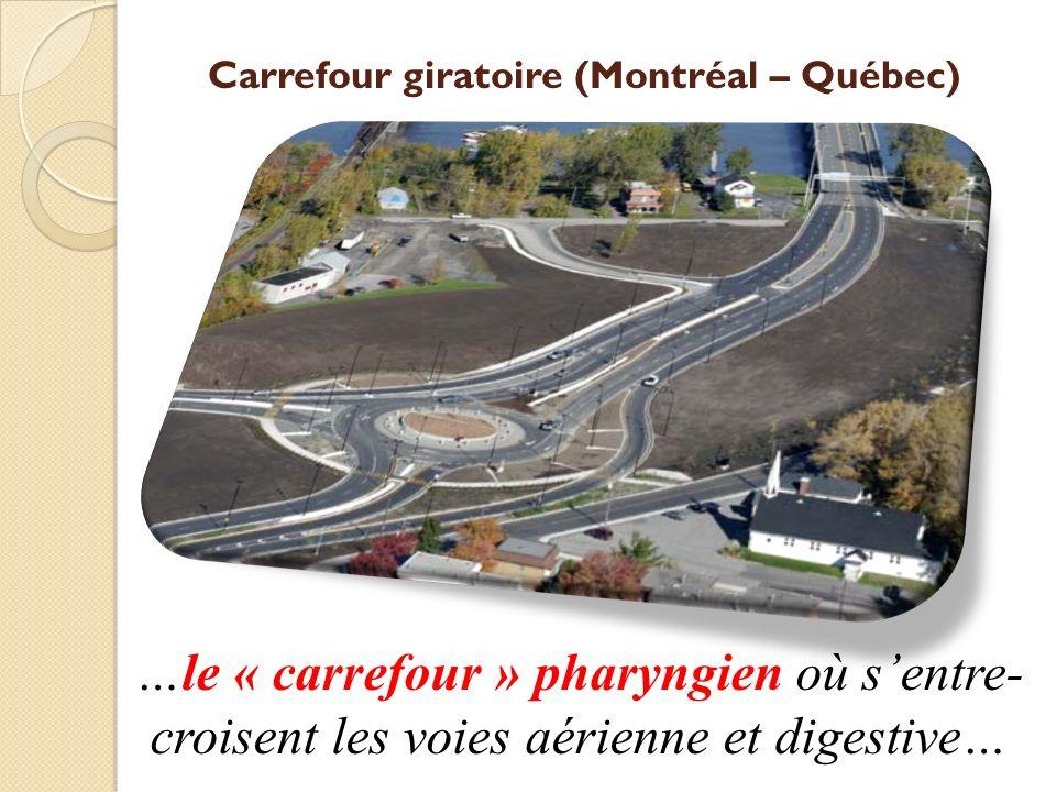 Carrefour giratoire (Montréal – Québec)