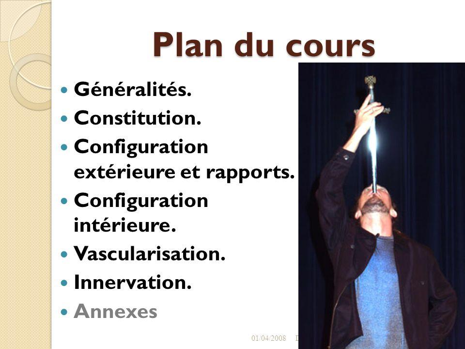 Plan du cours Généralités. Constitution.