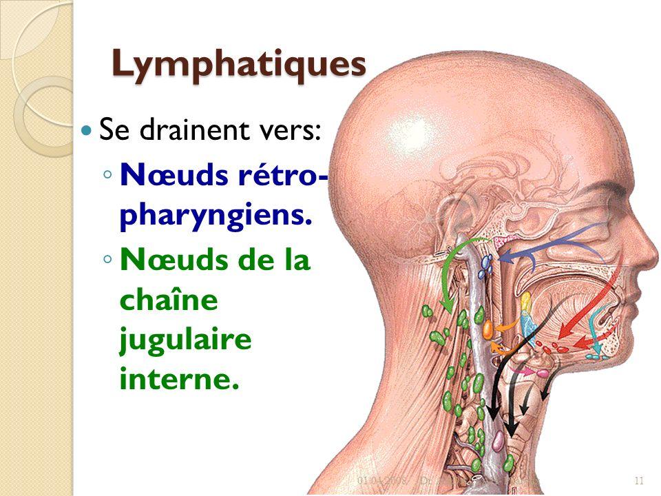 Lymphatiques Se drainent vers: Nœuds rétro- pharyngiens.