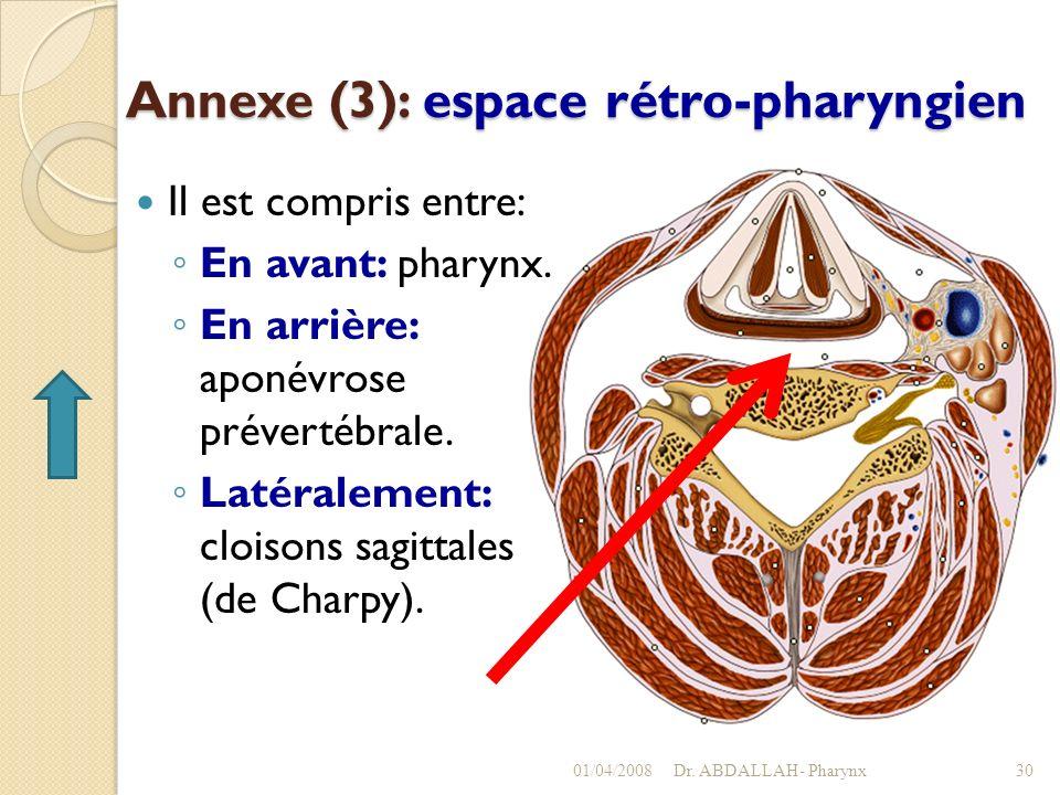 Annexe (3): espace rétro-pharyngien