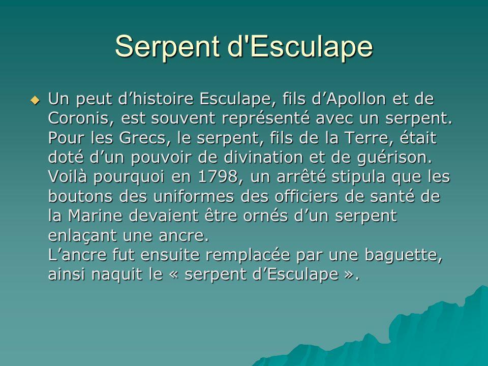 Serpent d Esculape