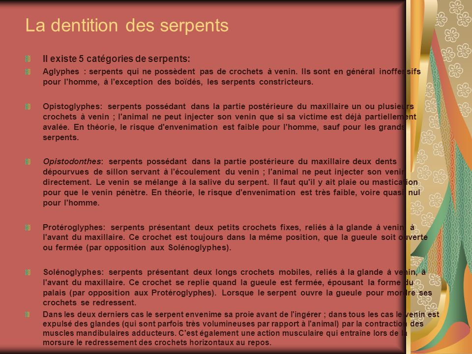 La dentition des serpents