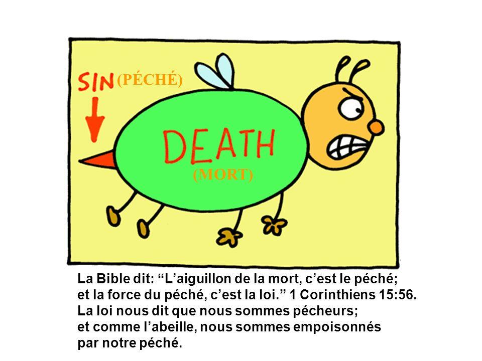 (PÉCHÉ) (MORT) La Bible dit: L'aiguillon de la mort, c'est le péché;