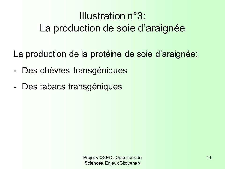 Illustration n°3: La production de soie d'araignée