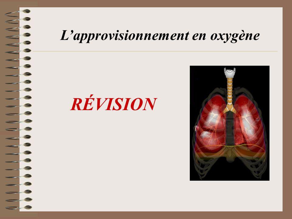 L'approvisionnement en oxygène