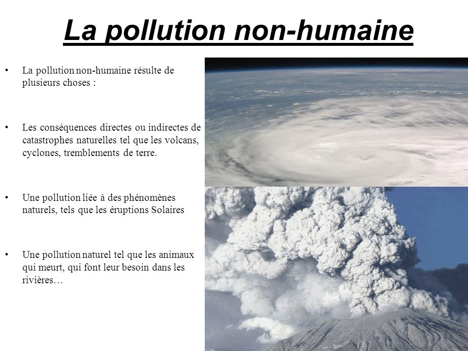 La pollution non-humaine