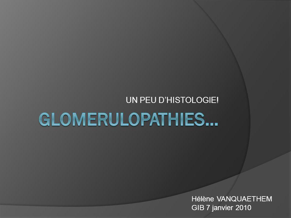 GLOMERULOPATHIES… UN PEU D'HISTOLOGIE! Hélène VANQUAETHEM