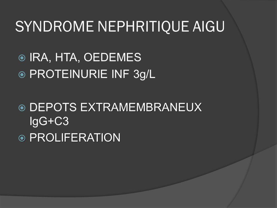SYNDROME NEPHRITIQUE AIGU