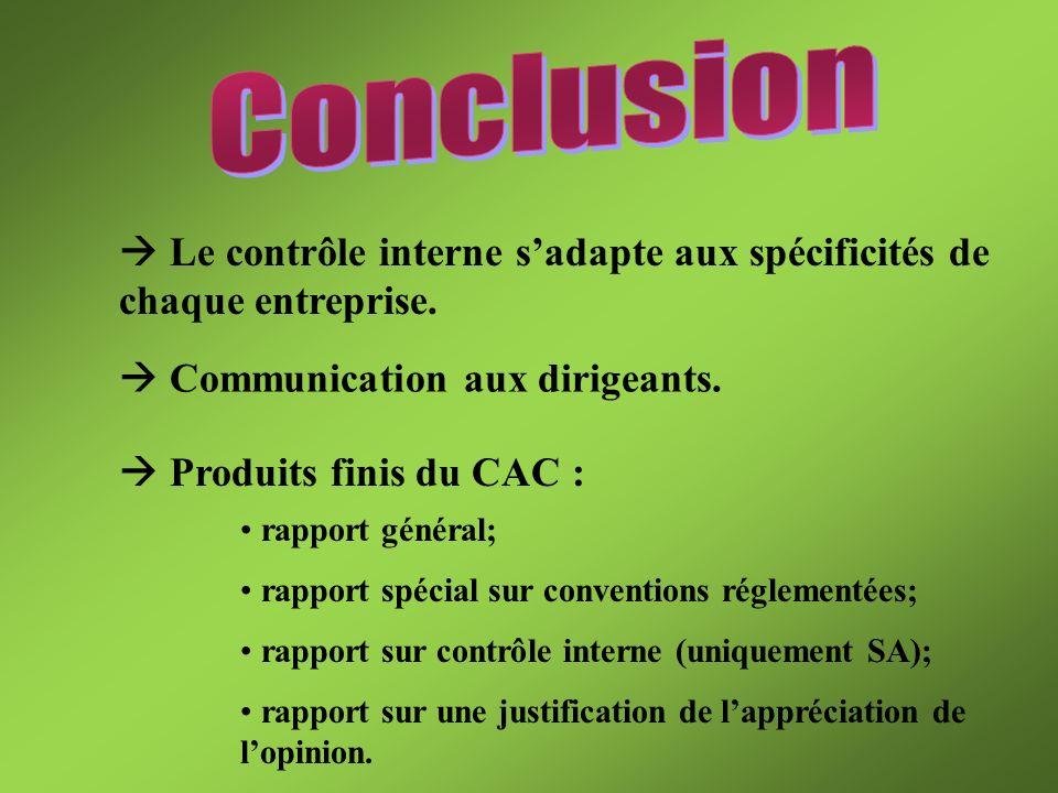 Conclusion  Le contrôle interne s'adapte aux spécificités de chaque entreprise.  Communication aux dirigeants.