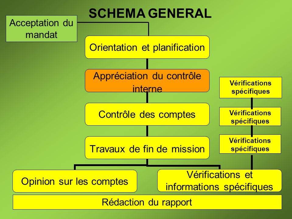 SCHEMA GENERAL Acceptation du mandat Rédaction du rapport