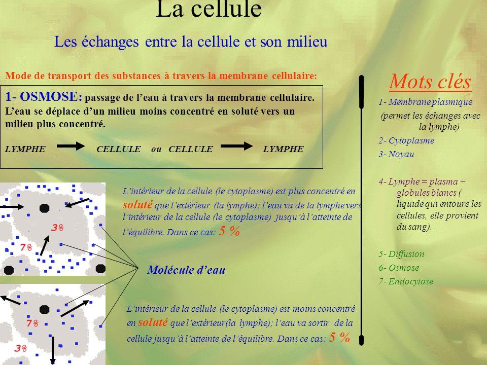 La cellule Mots clés Les échanges entre la cellule et son milieu