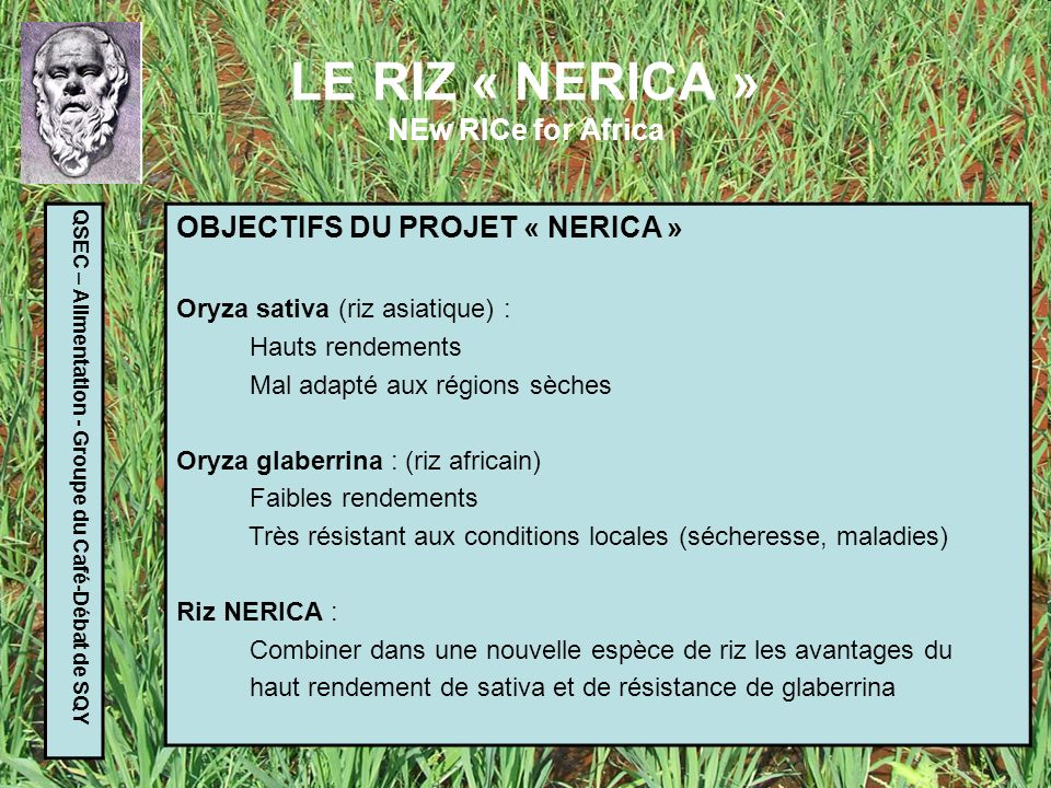 LE RIZ « NERICA » NEw RICe for Africa