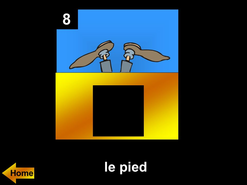 8 le pied Home