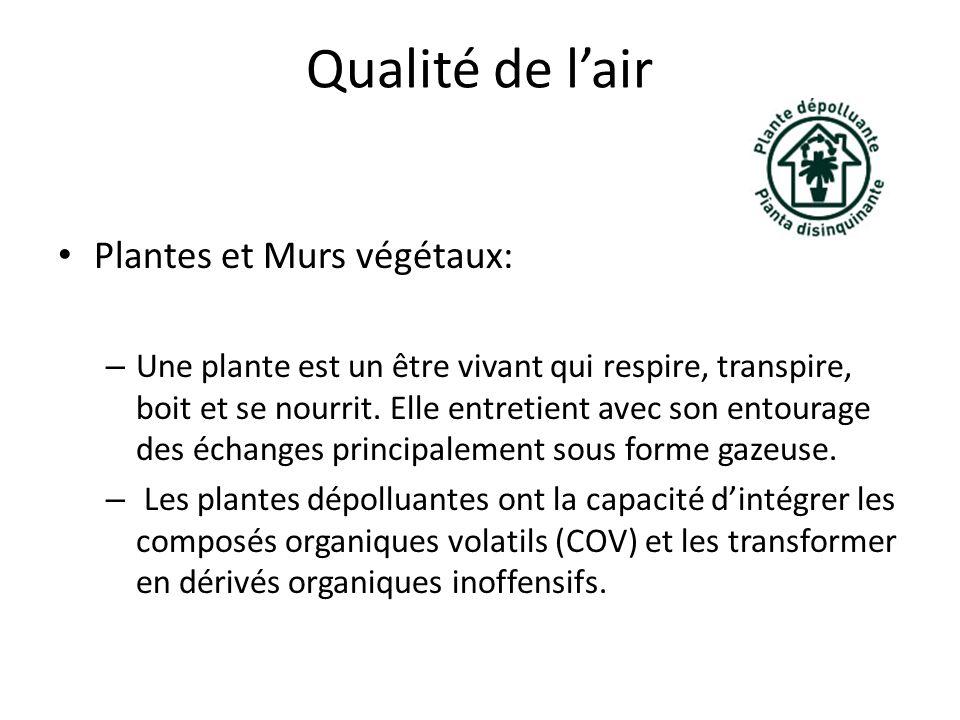 Qualité de l'air Plantes et Murs végétaux: