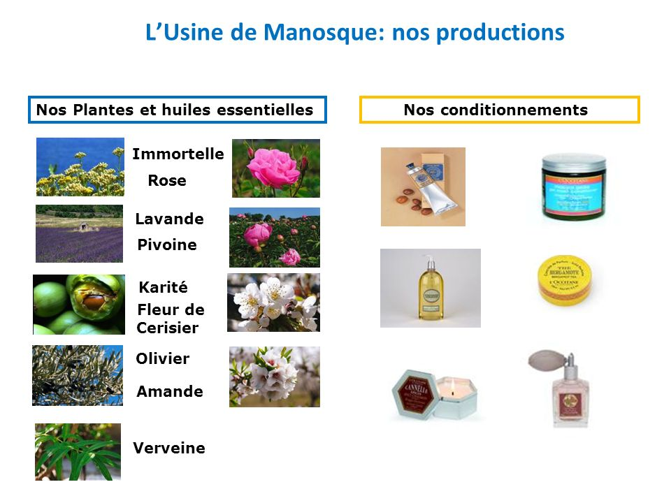 L'Usine de Manosque: nos productions
