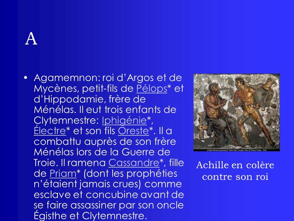 Achille en colère contre son roi