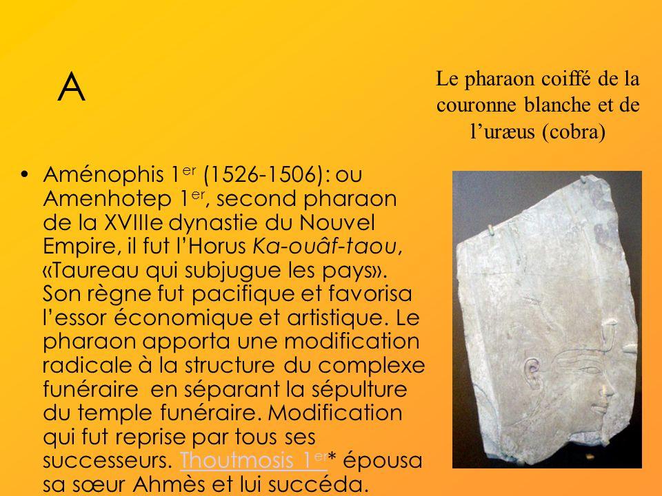 Le pharaon coiffé de la couronne blanche et de l'uræus (cobra)
