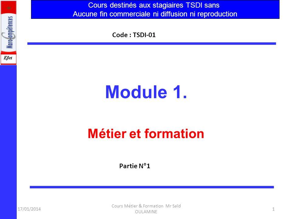 Module 1. Métier et formation Cours destinés aux stagiaires TSDI sans