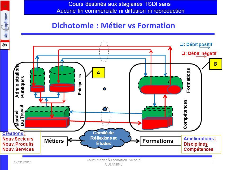 Dichotomie : Métier vs Formation