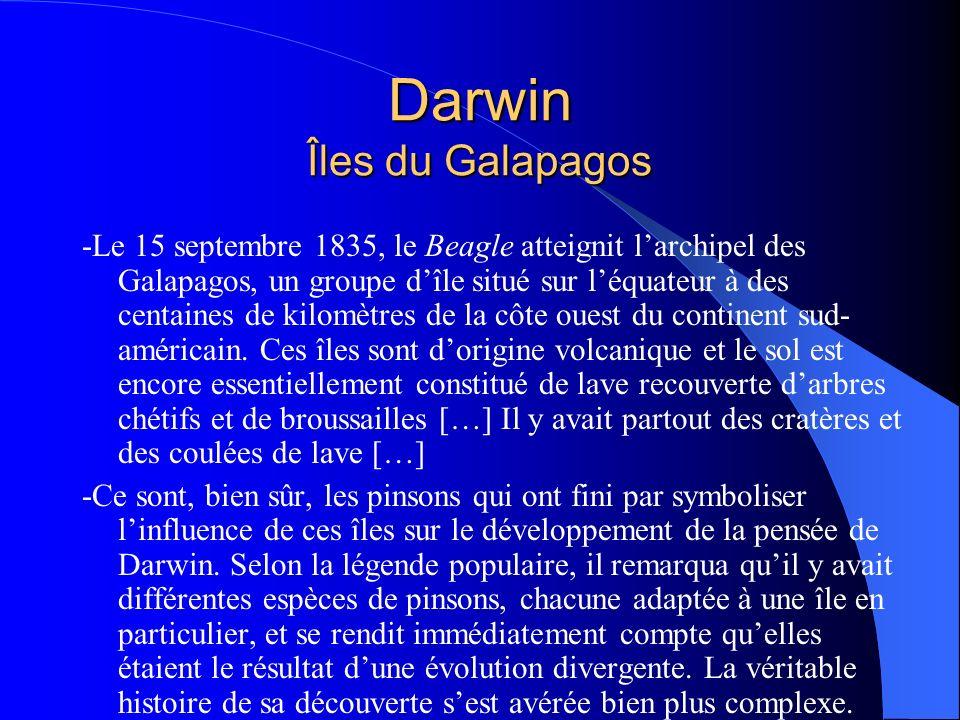 Darwin Îles du Galapagos