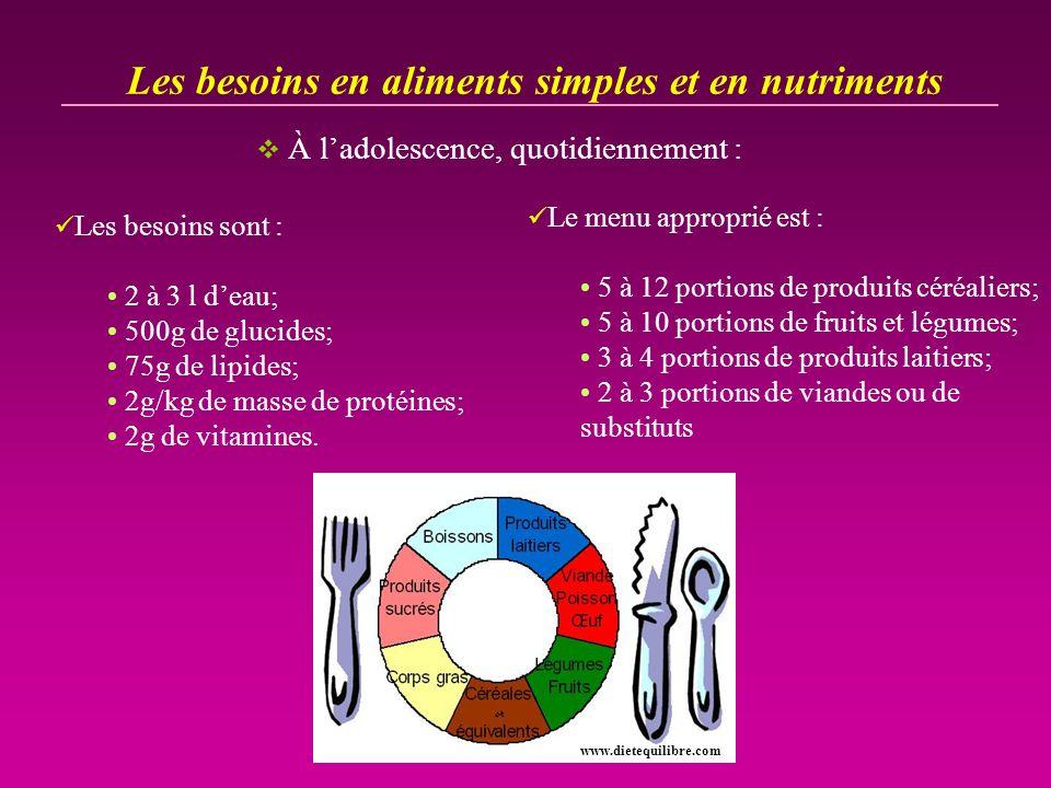 Les besoins en aliments simples et en nutriments