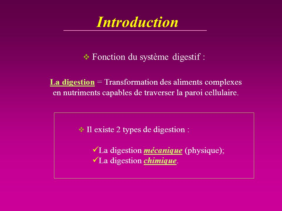 Introduction Fonction du système digestif :