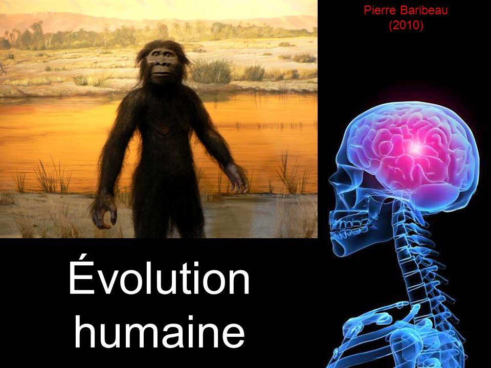 Pierre Baribeau (2010) Évolution humaine