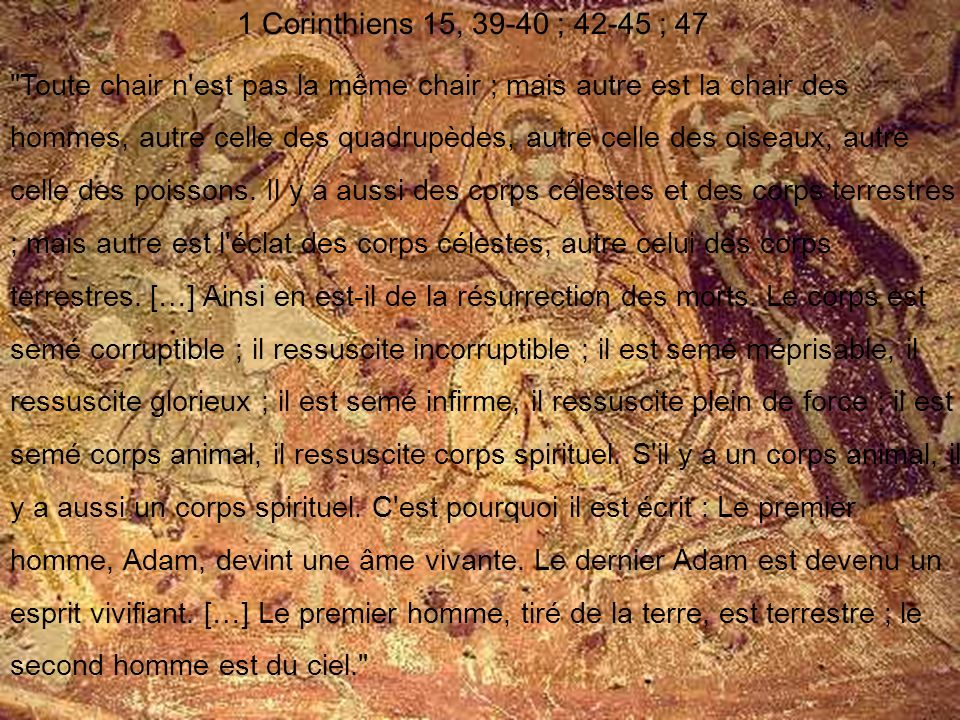 1 Corinthiens 15, 39-40 ; 42-45 ; 47