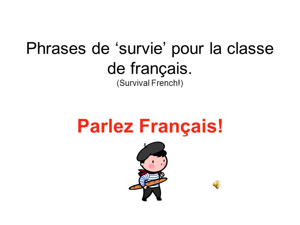 Phrases de 'survie' pour la classe de français. (Survival French!)
