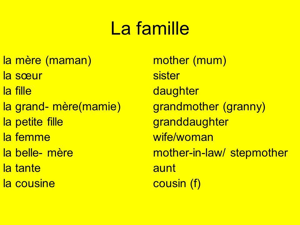 La famille la mère (maman) mother (mum) la sœur sister