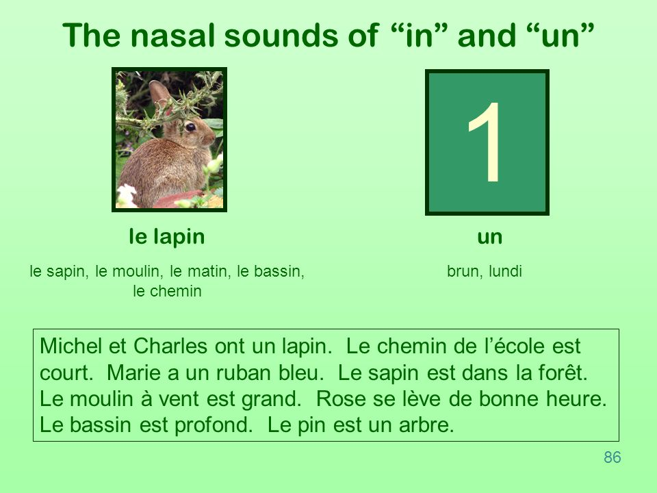1 The nasal sounds of in and un le lapin un