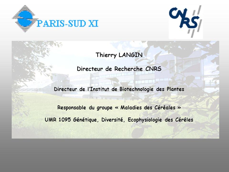 Thierry LANGIN Directeur de Recherche CNRS
