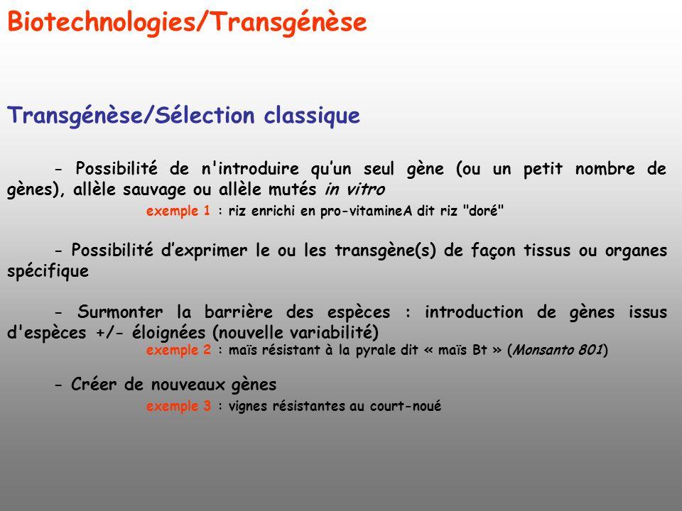 Biotechnologies/Transgénèse