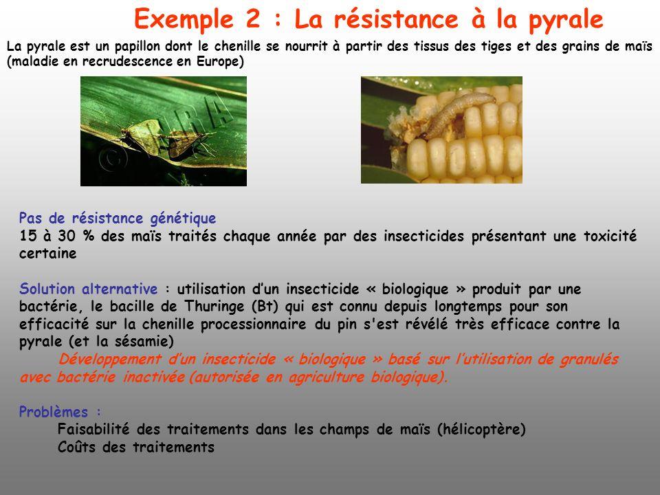 Exemple 2 : La résistance à la pyrale