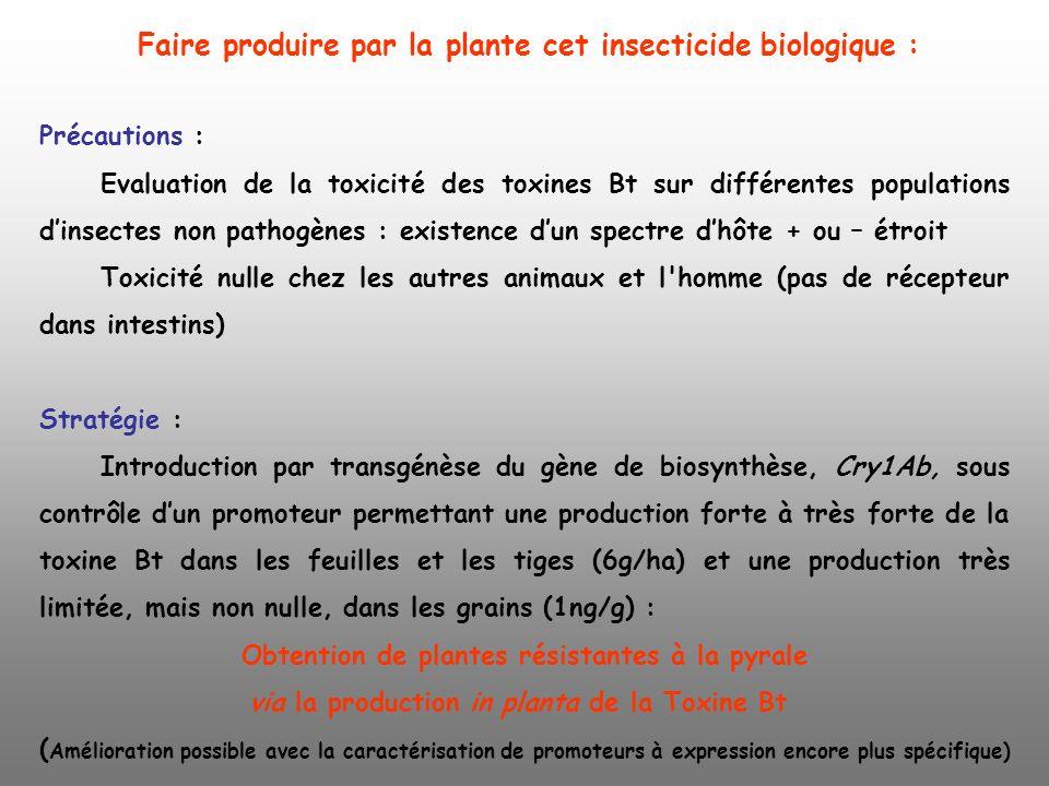 Faire produire par la plante cet insecticide biologique :