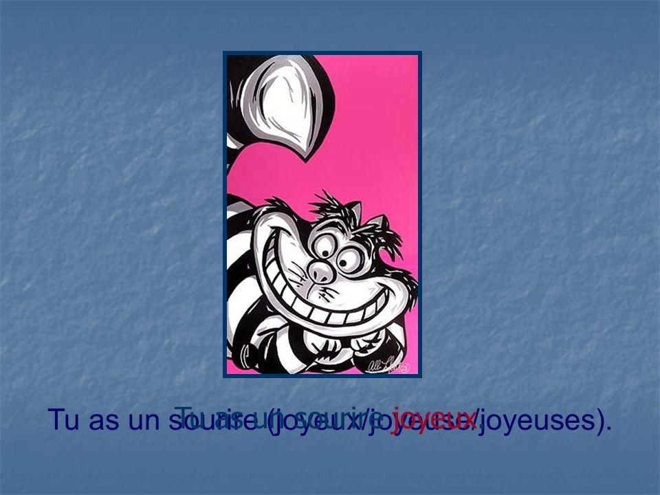 Tu as un sourire (joyeux/joyeuse/joyeuses).