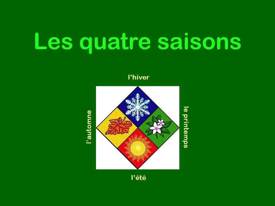 Les quatre saisons l'hiver l'automne le printemps l'été
