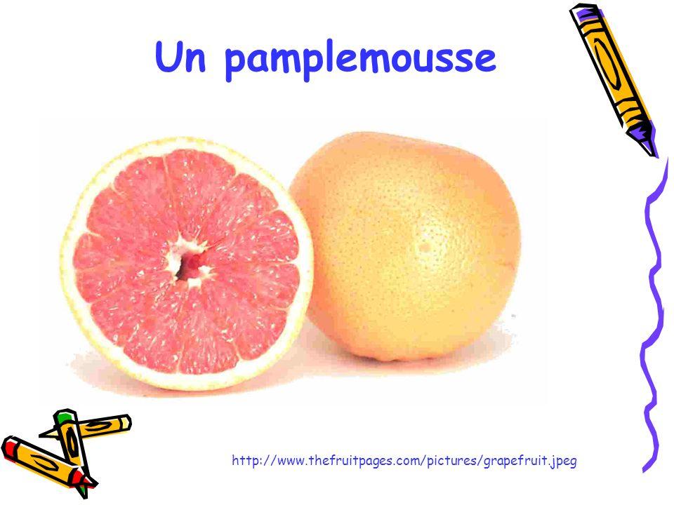 Un pamplemousse http://www.thefruitpages.com/pictures/grapefruit.jpeg