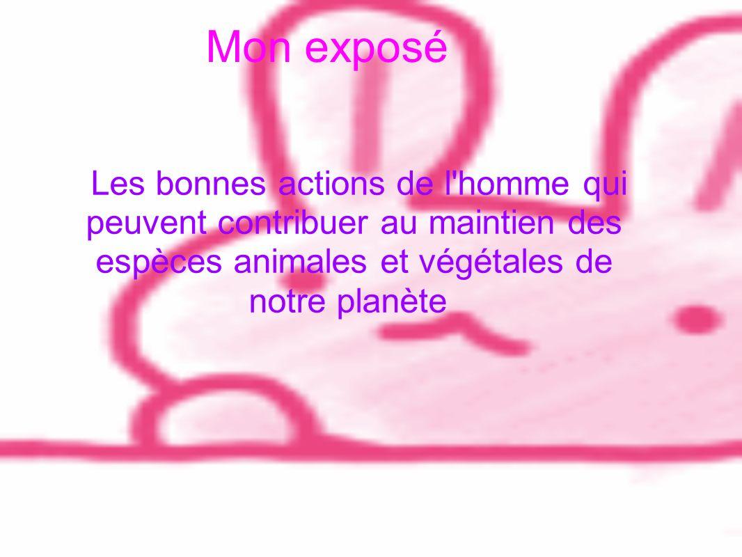 Mon exposé Les bonnes actions de l homme qui peuvent contribuer au maintien des espèces animales et végétales de notre planète