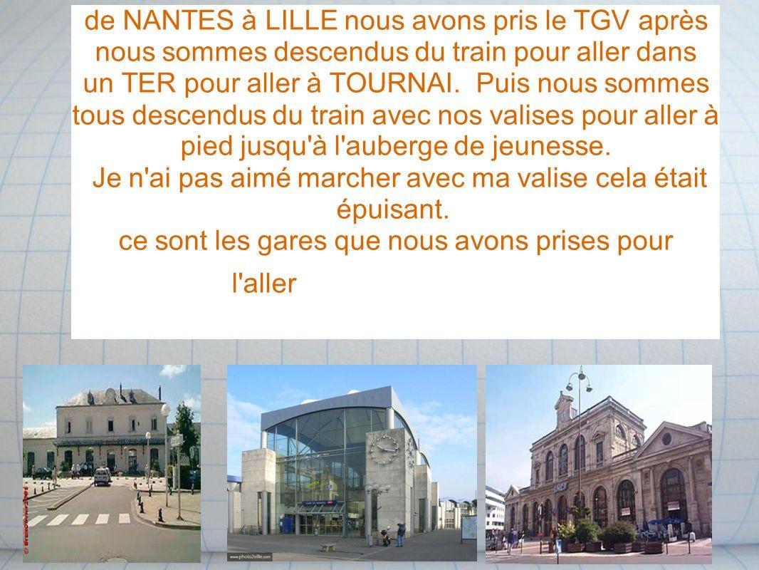 de NANTES à LILLE nous avons pris le TGV après nous sommes descendus du train pour aller dans un TER pour aller à TOURNAI. Puis nous sommes tous descendus du train avec nos valises pour aller à pied jusqu à l auberge de jeunesse.