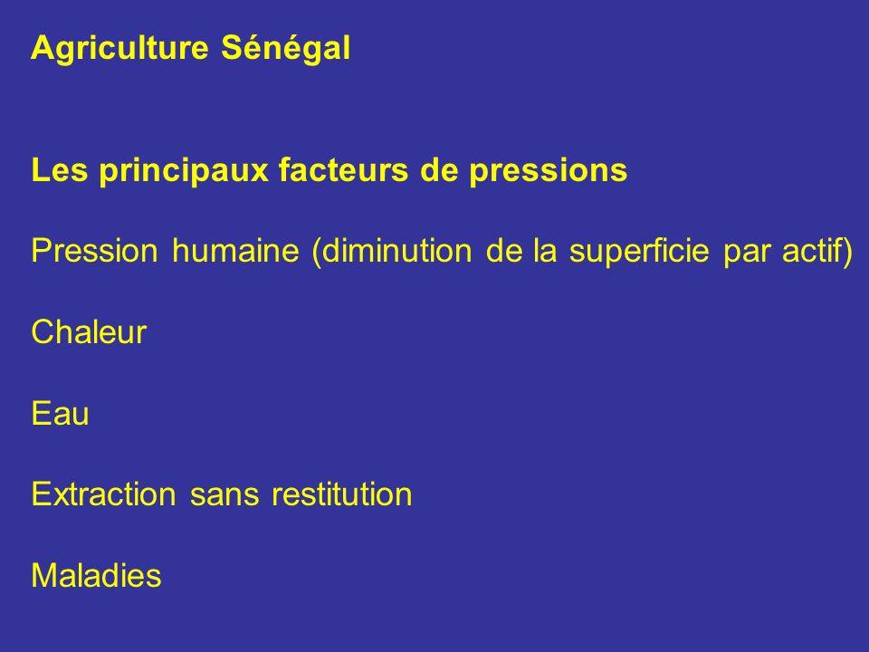 Agriculture Sénégal Les principaux facteurs de pressions. Pression humaine (diminution de la superficie par actif)