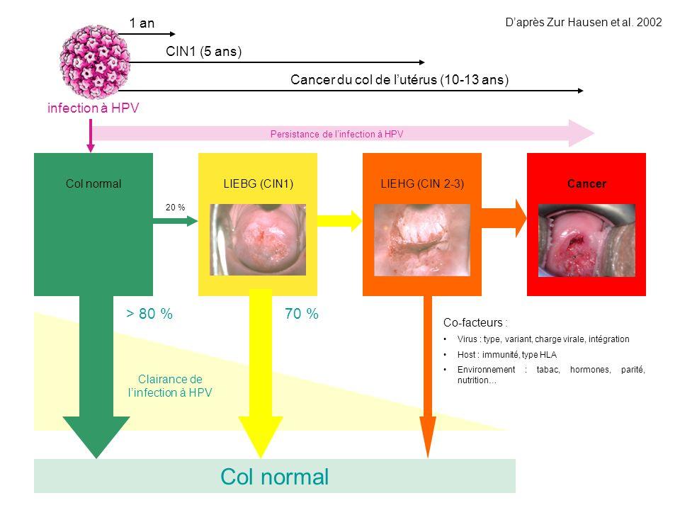 Col normal > 80 % 70 % 1 an CIN1 (5 ans)