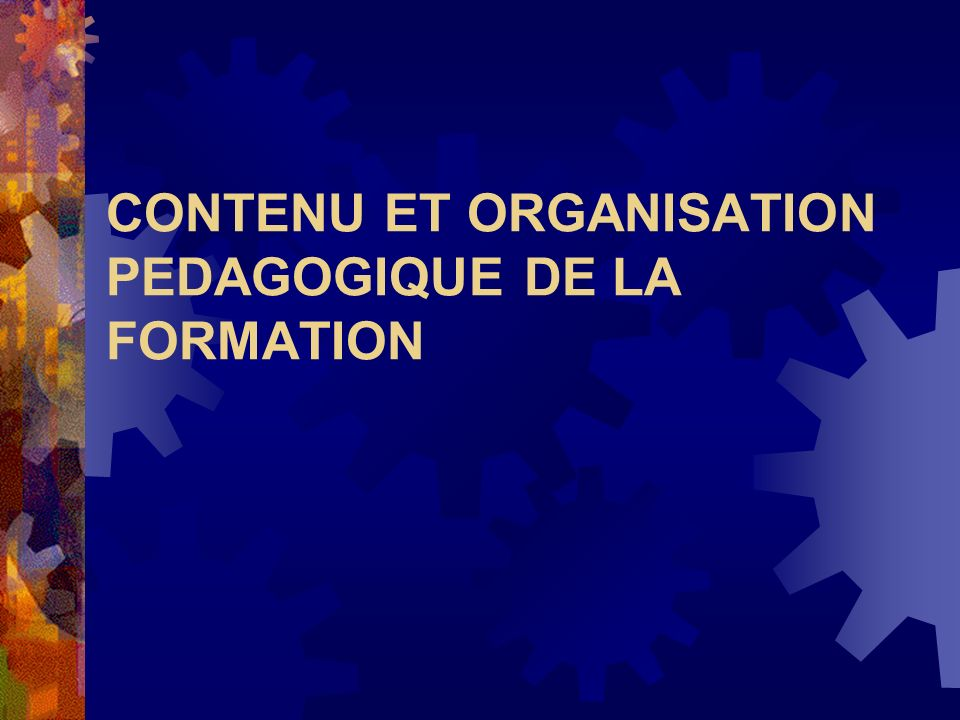 CONTENU ET ORGANISATION PEDAGOGIQUE DE LA FORMATION