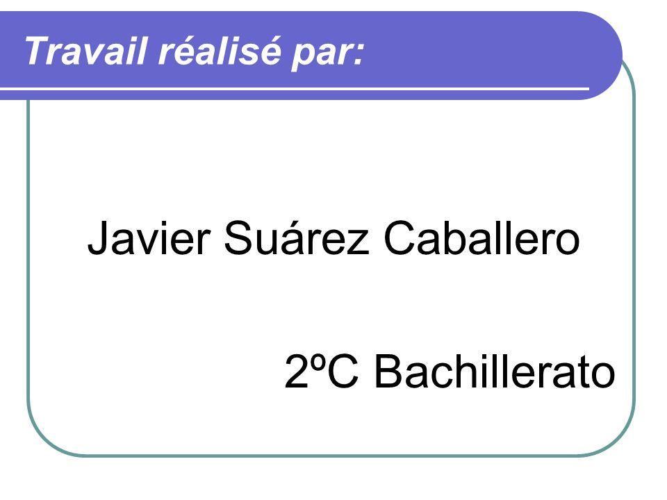 Javier Suárez Caballero