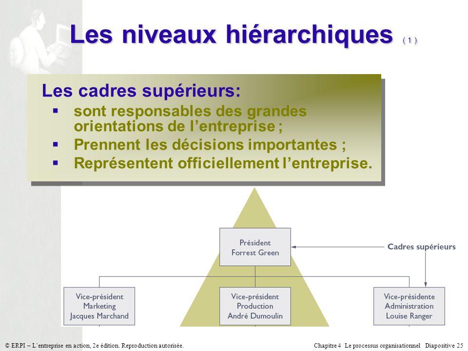 Les niveaux hiérarchiques ( 1 )
