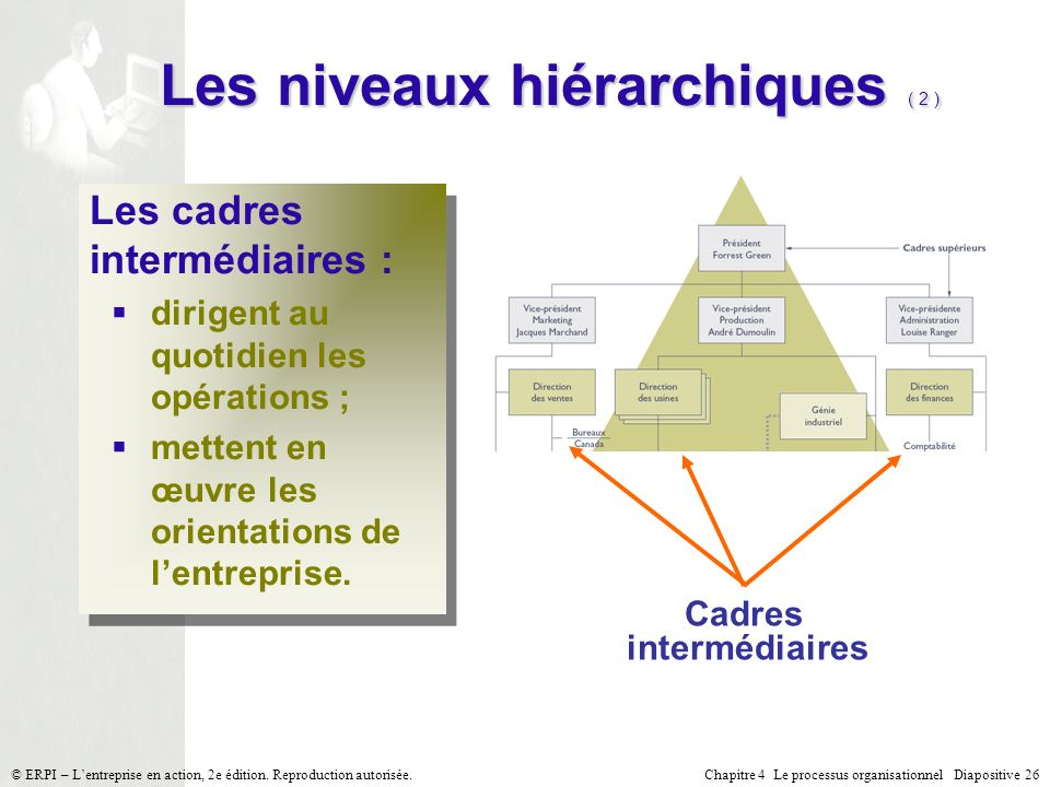 Les niveaux hiérarchiques ( 2 )
